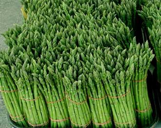 зеленая спаржа